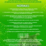 Cartel_Carrozas_2013