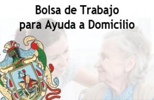 Bolsa_Ayuda_Domicilio